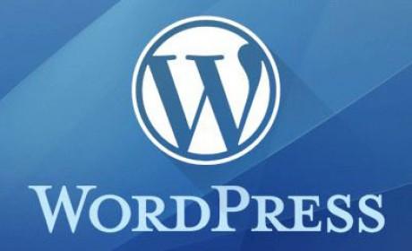 WordPress  དྲ་ཚིགས་བཟོ་བསྐྲུན།